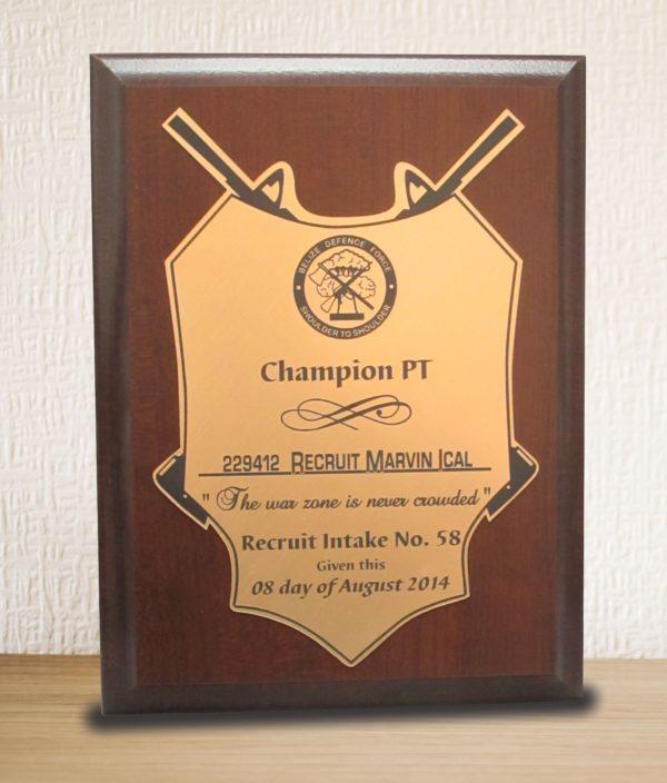 plaque 18